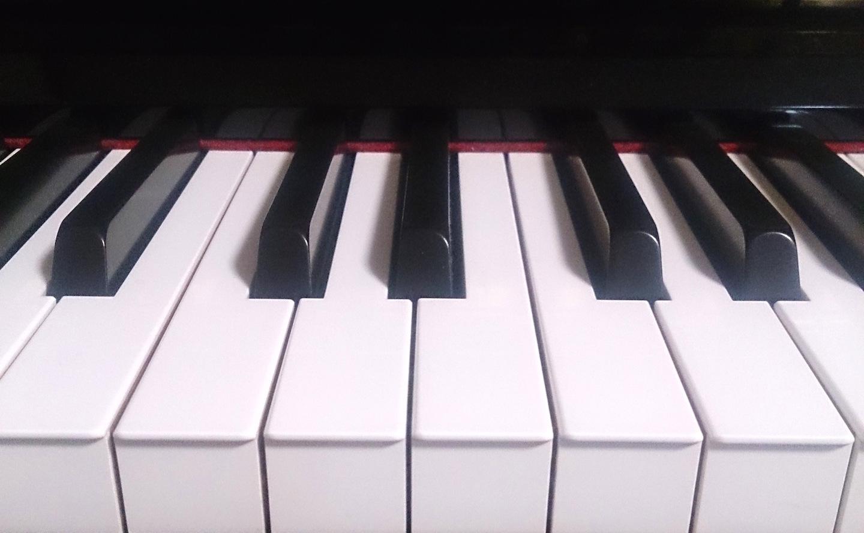 プロフィール画像(ピアノの鍵盤)