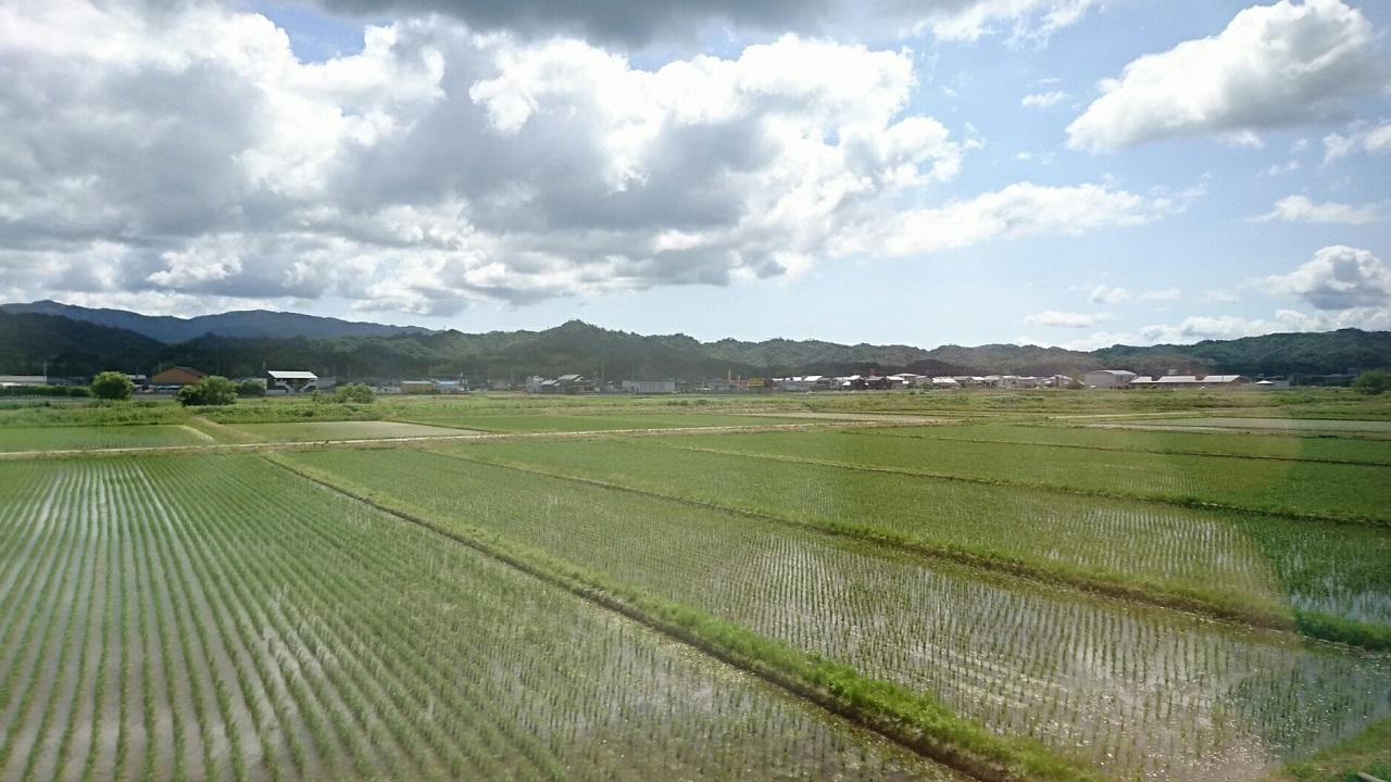 2017.6.4 天橋立 (34) 丹后のうみ(はしだて2号) - たんぼ 1280-720