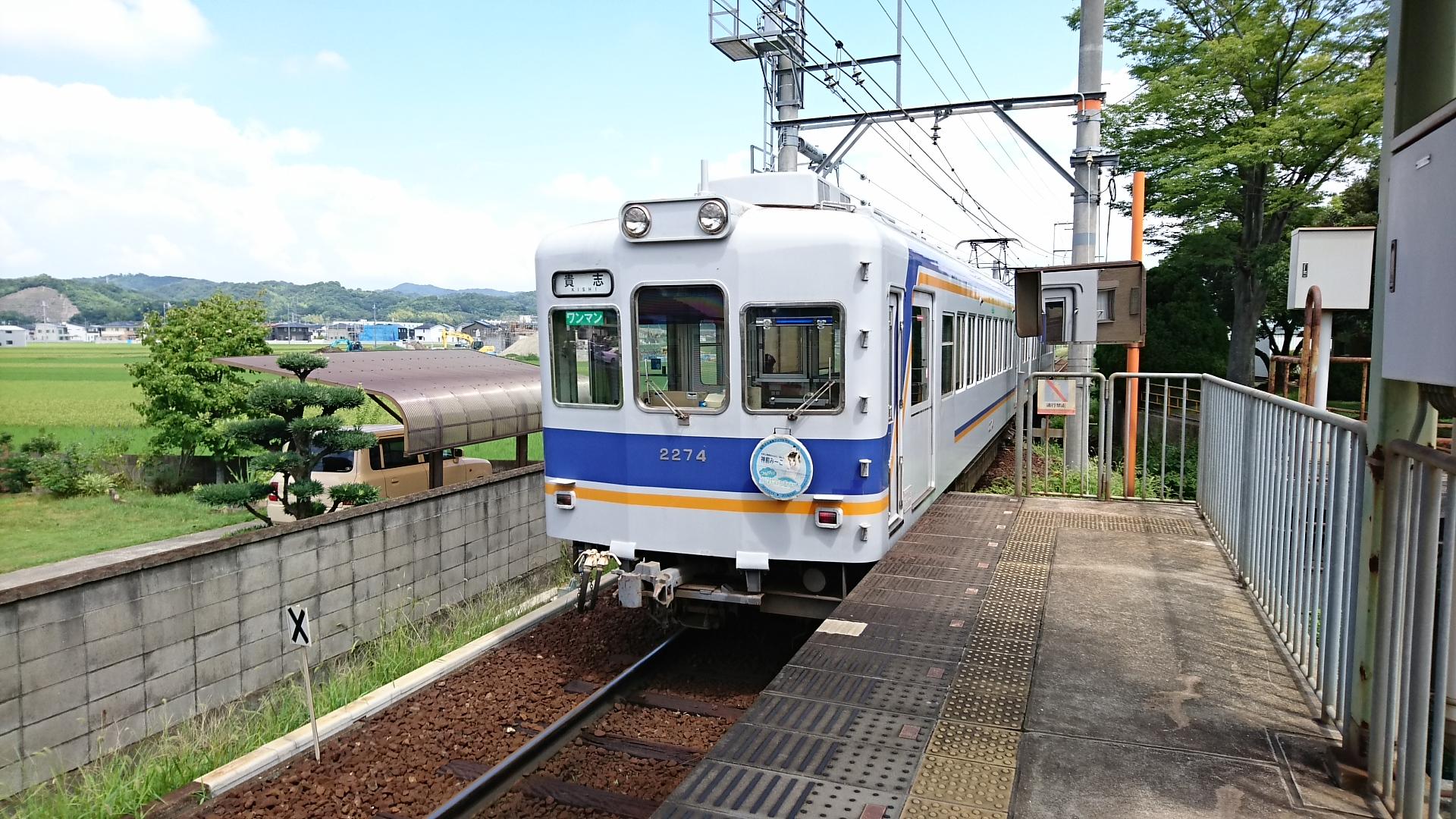 2017.8.17 たま電車 (22) 交通センター前 - 貴志いきふつう 1920-1080