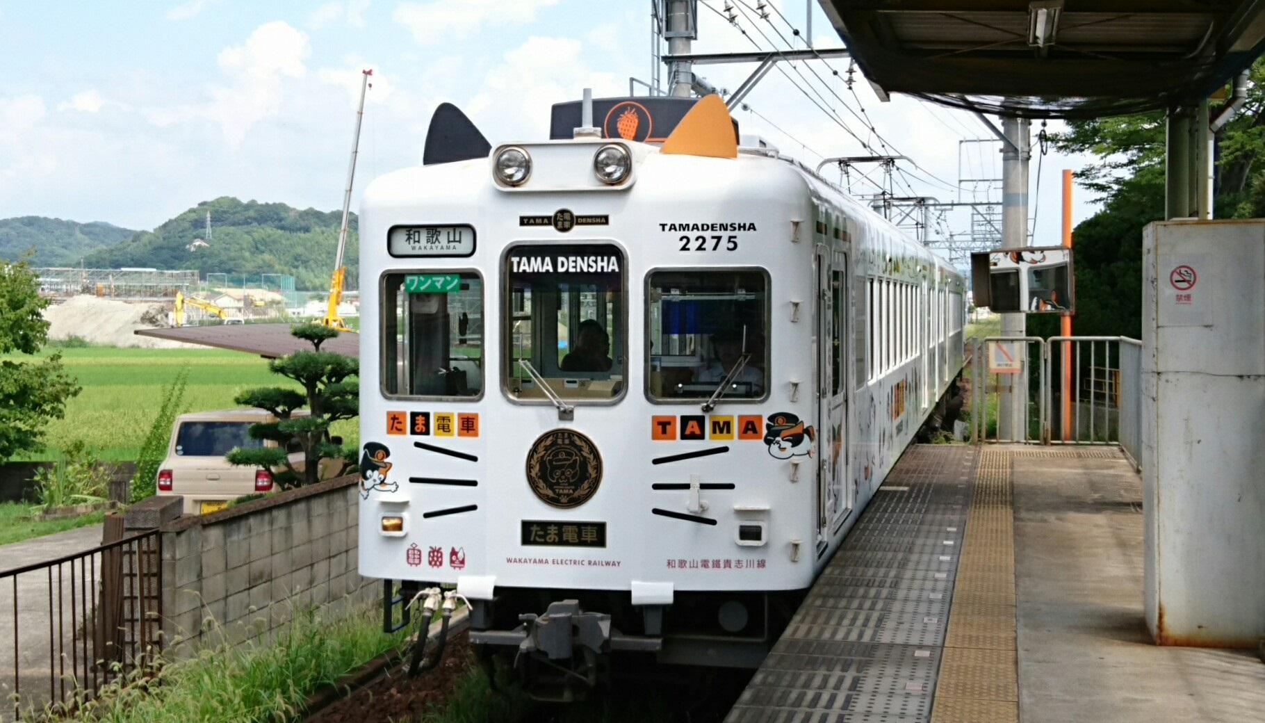 2017.8.17 たま電車 (23) 交通センター前 - 和歌山いきふつう〔たま電車〕 1820-1040