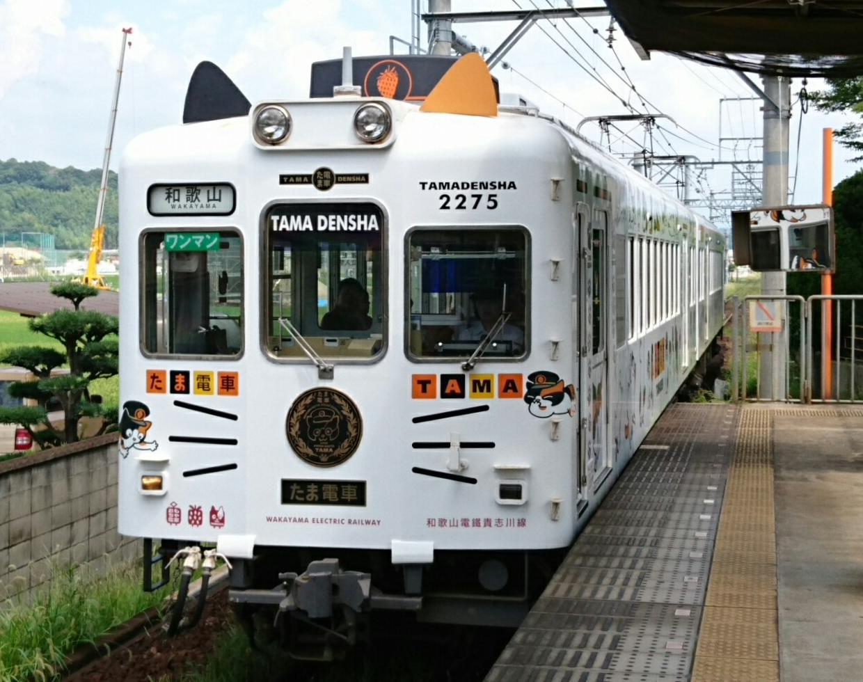 2017.8.17 交通センター前 - 和歌山いきふつう〔たま電車〕 1240-980
