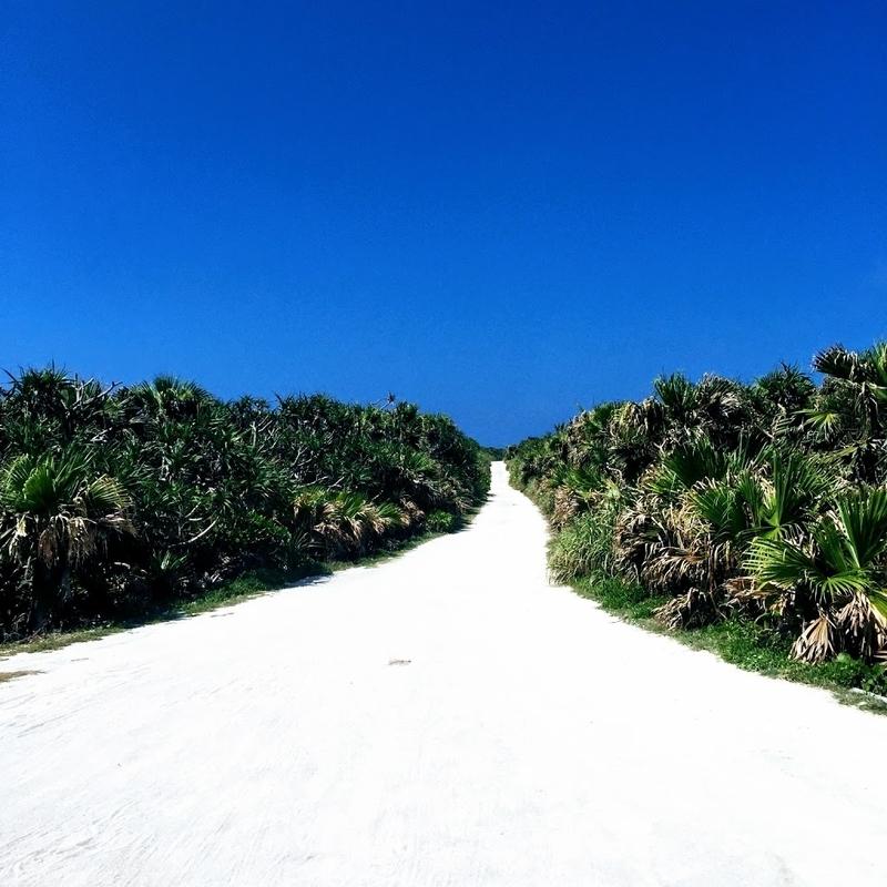青い空・白い砂道・植物の緑という久高島の光景 | 沖縄・久高島