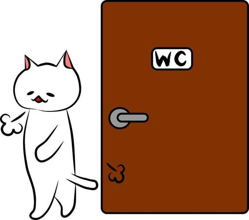 トイレに入ってスッキリした猫