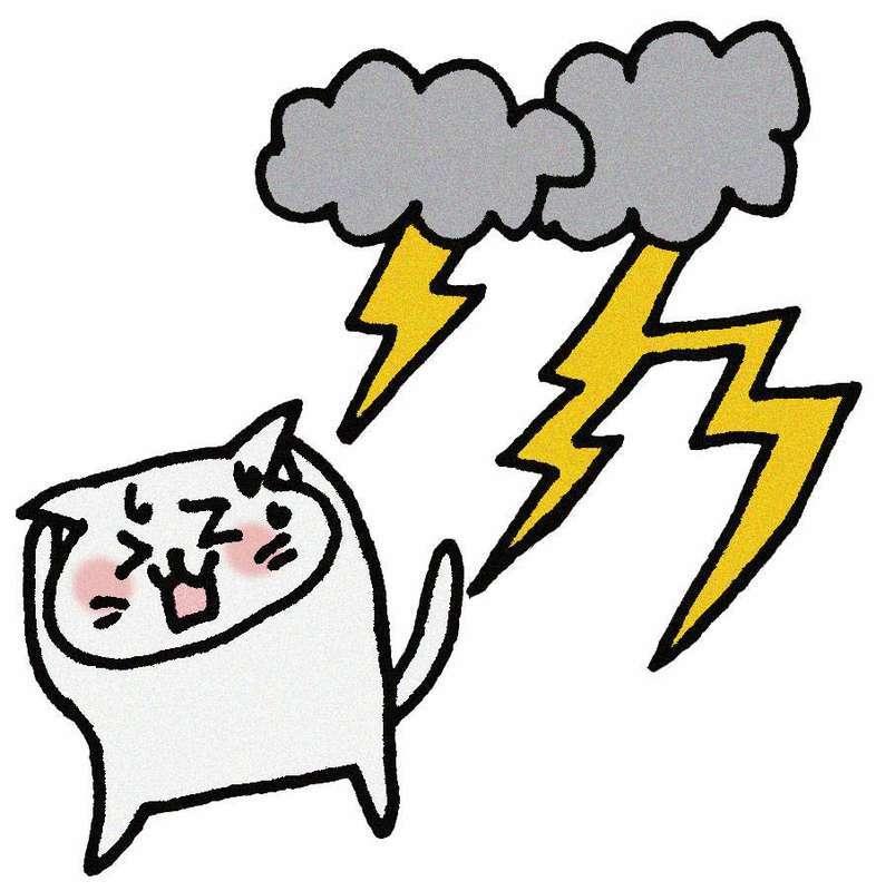 雷を怖がる猫のイラスト