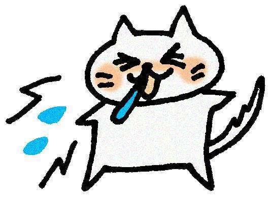 くしゃみする猫