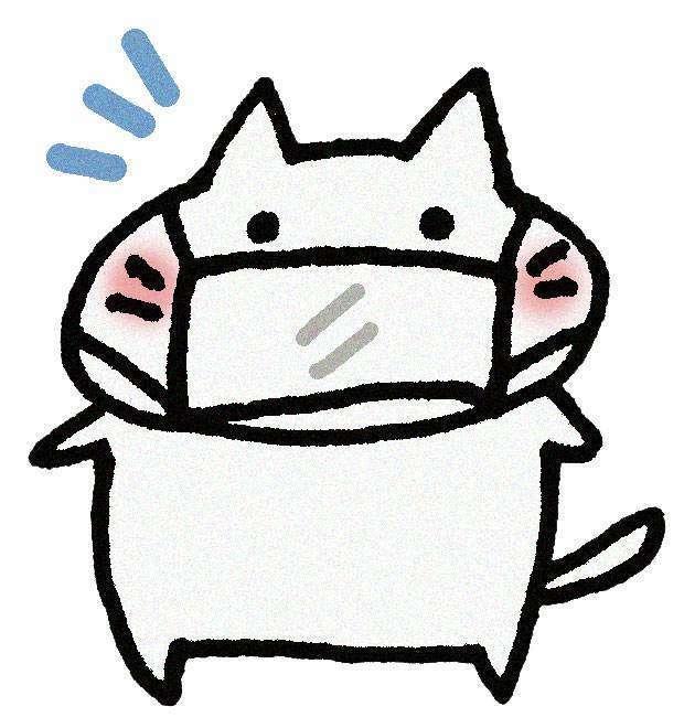 マスクしてる猫