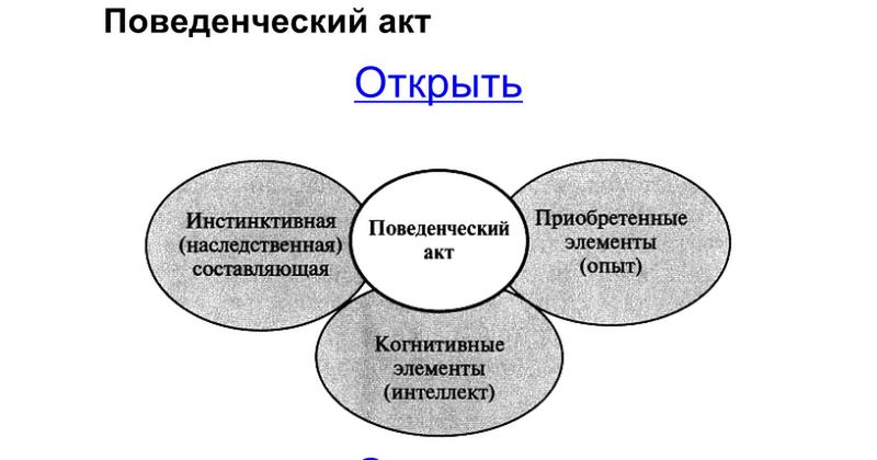 протокол о создании товарищества образец