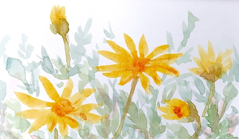 靭公園にて水彩で花を、スケッチ