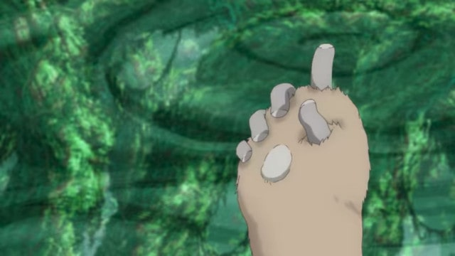 ナナチの指