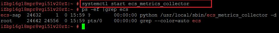 ECS メトリクスコレクタの起動