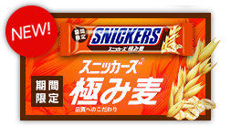 http://snickers.jp/index.html