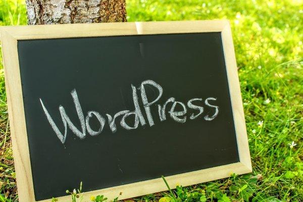 何故アフィリエイト初心者が使うブログはワードプレスがいいといわれるのか??