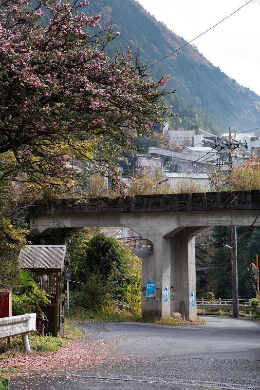 181111 貨物線橋梁と奥多摩工業