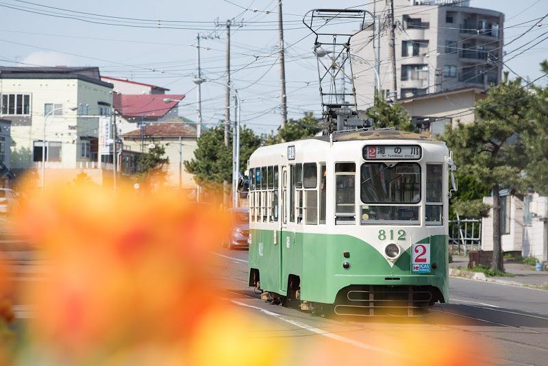 170505 花と函館市電812