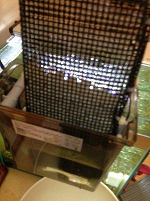 園芸用鉢底ネットで作った箱