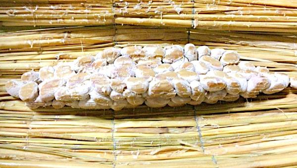 「なにわら納豆 ~復活納豆職人金司の味~」の藁の中の納豆の画像