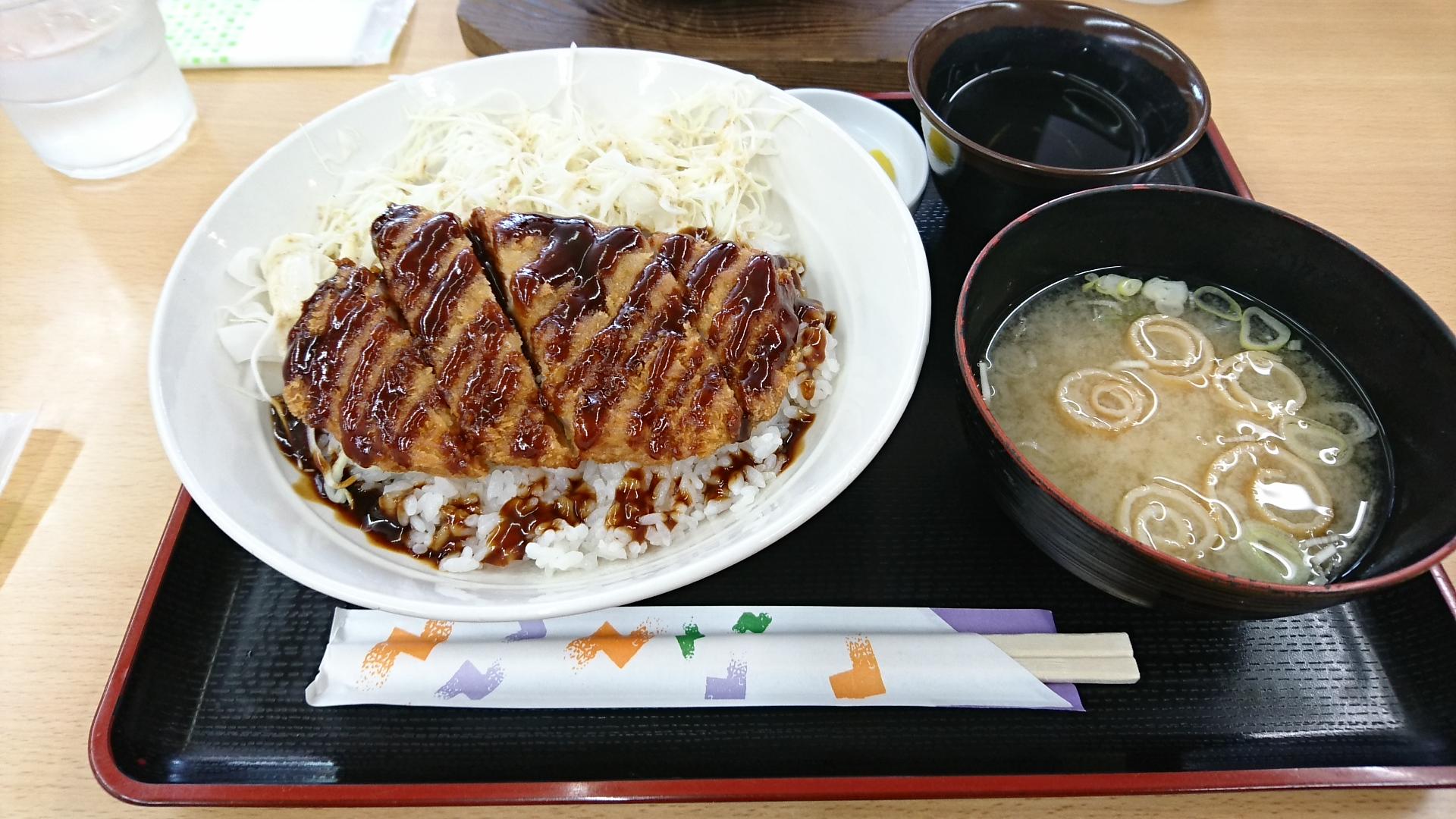 2017.6.4 天橋立 (81) ソースかつどん