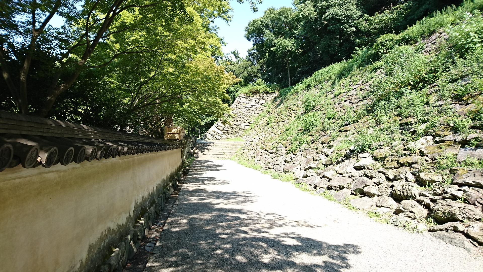2017.8.17 わかやま (3) 和歌山城=いしがき 1920-1080