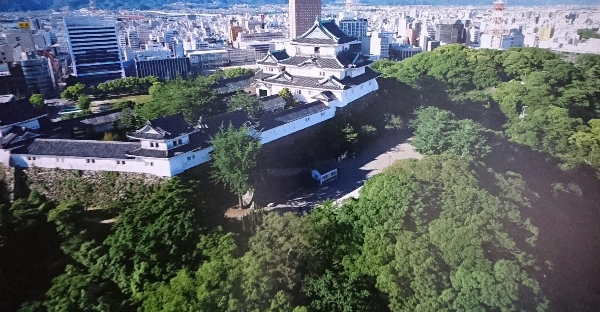 2017.8.17 わかやま (22) そらからみた和歌山城 2000-1040